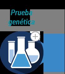 Genética y Duchenne